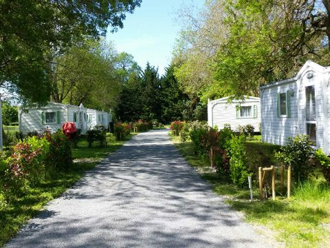 Camping La Cle des Champs - Camping Charente-Maritime - Image N°6