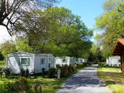 Camping La Cle des Champs - Camping Charente-Maritime - Image N°5