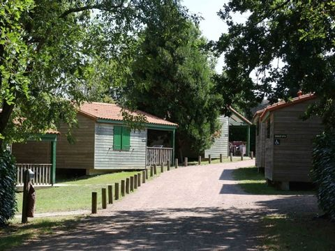 Camping du Lac d'Hautibus - Camping Deux-Sevres - Image N°15