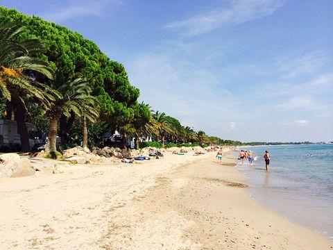 Camping Playa Montroig  - Camping Tarragone - Image N°28