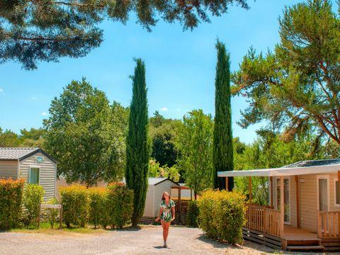 Camping Coteau de la Marine - Camping Alpes-de-Haute-Provence - Image N°27