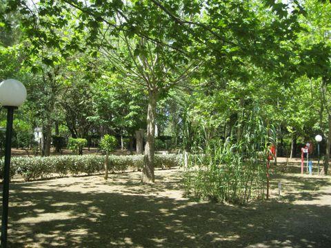 Camping Le Rebau  - Camping Herault - Image N°11