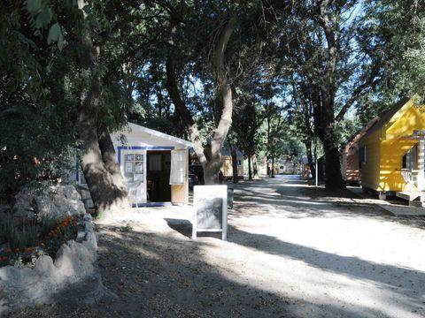 Camping Bellerive - Camping Gard - Image N°2