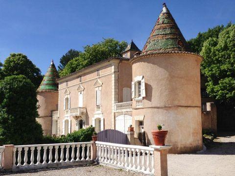 Camping Château de l'Eouvière - Camping Var - Image N°9