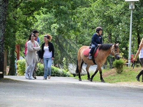 Camping Domaine Le Quercy - Camping Lot - Image N°19