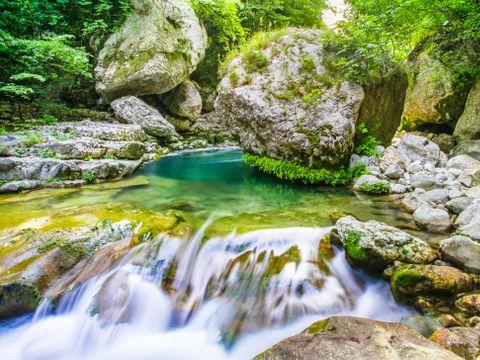 Les Pinèdes- Camping Sites et Paysages - Camping Alpes-Maritimes - Image N°19