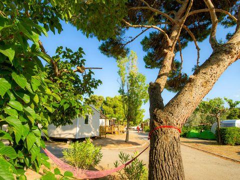 Camping La Falaise - Camping Aude - Image N°25