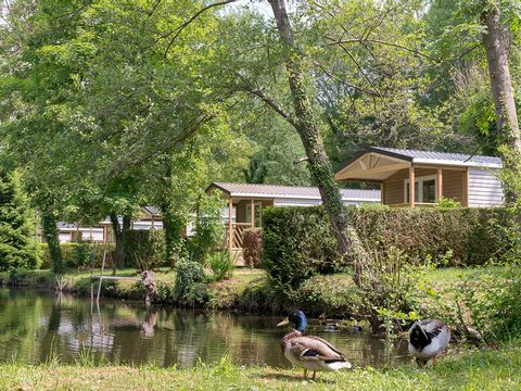 Val-Oise  CAMPING LE GRAND PARIS - Camping Val-Oise - Afbeelding N°11