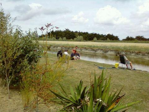 Camping Le Grand Jardin  - Camping Vendée - Image N°10