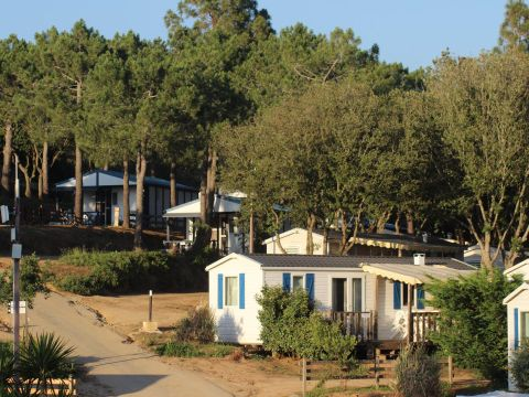 Camping maeva Escapades Le Colomba  - Camping Corse du sud - Image N°19