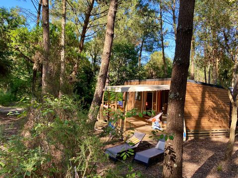 Camping Espace Blue Ocean - Camping Landes - Image N°44
