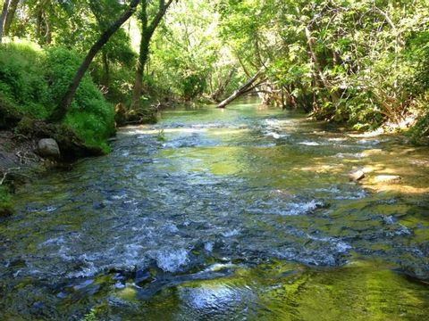 Camping des Sources - Camping Herault - Image N°7