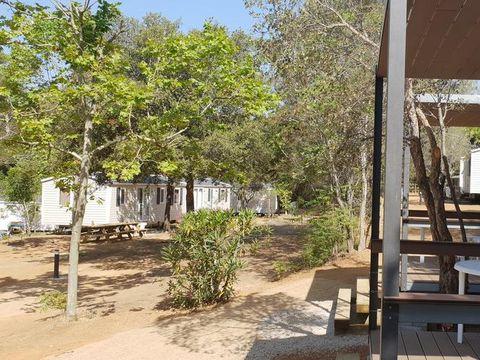 Camping 3 Estrellas Costa Brava  - Camping Gérone - Image N°11