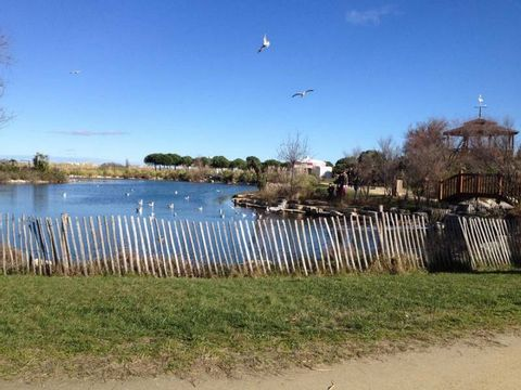 Camping Montpellier Plage - Camping Hérault - Image N°12