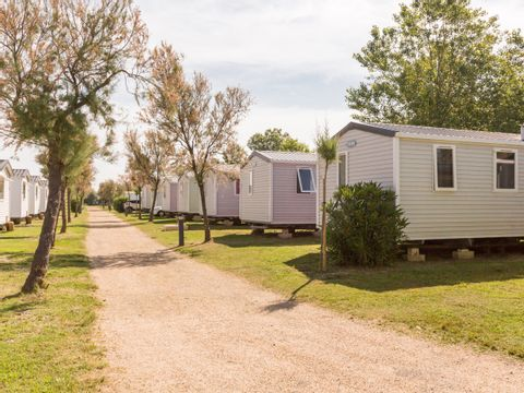 Camping Domaine Saint Maurice  - Camping Hérault - Image N°8