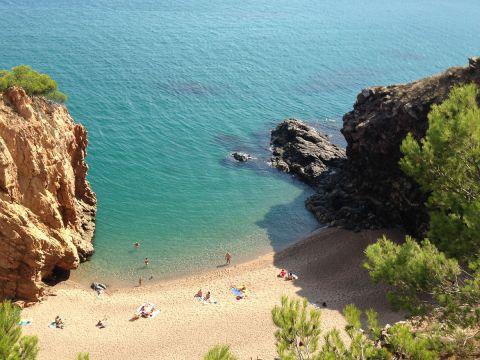 Camping Mas Patoxas - Camping Girona - Image N°26