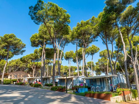 Camping Interpals - Camping Gérone - Image N°6