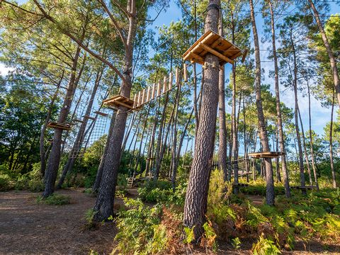 Camping le Pipiou - Camping Landes - Image N°19