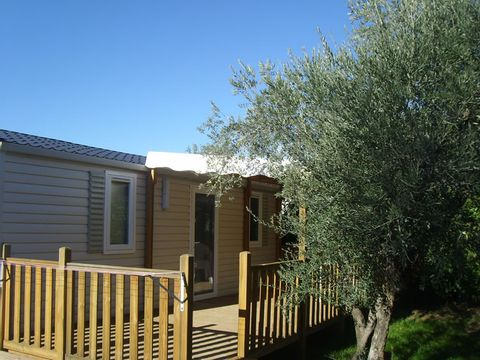 Camping Les Oliviers  - Camping Alpes-de-Haute-Provence - Image N°14