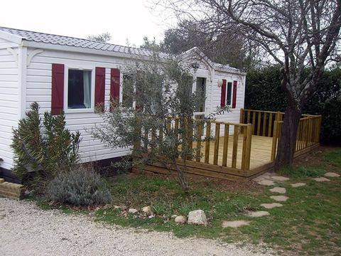 Camping Les Oliviers  - Camping Alpes-de-Haute-Provence - Image N°16