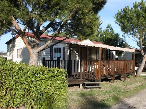 Camping Manon - Camping Vaucluse - Image N°9