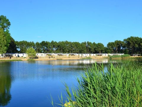Camping Le Domaine d'Inly - Camping Morbihan - Image N°14