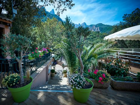 Camping Les Oliviers - Camping Corse du sud - Image N°8