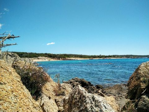 Camping Kevano Plage - Camping Corse du sud - Image N°2