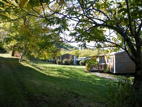 Camping Noix de Pecan'y - Camping Dordogne - Image N°8