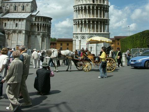 Pisa  Camping Torre Pendente - Camping Pisa - Afbeelding N°9