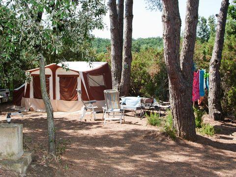 Camping Il Borgo Centro Vacanze  - Camping Pise - Image N°4