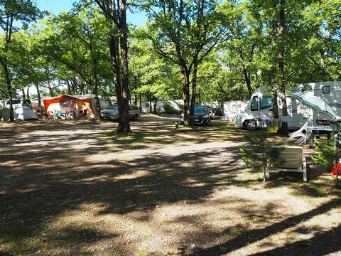 Camping Le Picouty - Camping Lot - Image N°10