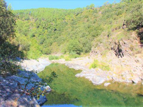 Camping Le Moulin du Luech - Camping Gard - Image N°4