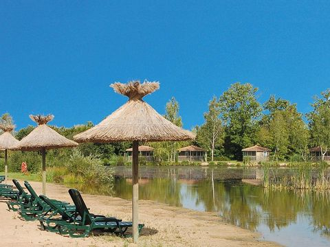 Loiret  Camping Domaine Les Bois du Bardelet  - Camping Loiret - Afbeelding N°27