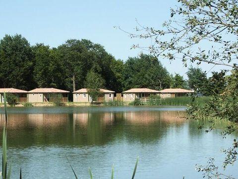 Loiret  Camping Domaine Les Bois du Bardelet  - Camping Loiret - Afbeelding N°32