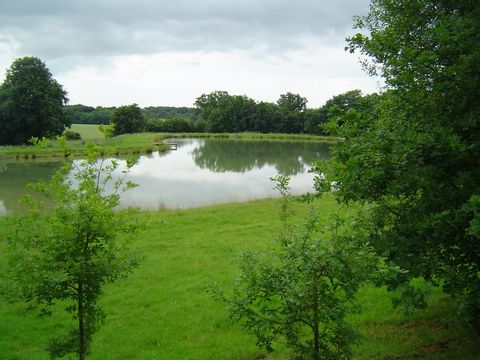 Loiret  Camping Domaine Les Bois du Bardelet  - Camping Loiret - Afbeelding N°31