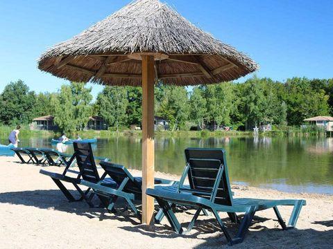 Camping Domaine Les Bois du Bardelet  - Camping Loiret - Image N°14