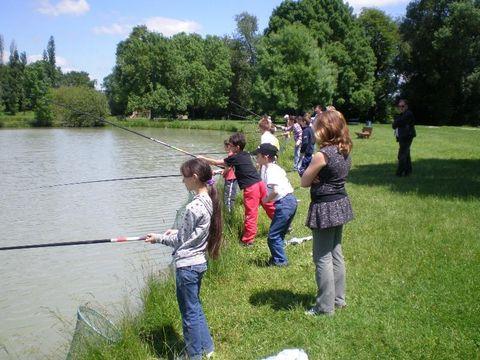 Loiret  Camping Domaine Les Bois du Bardelet  - Camping Loiret - Afbeelding N°52