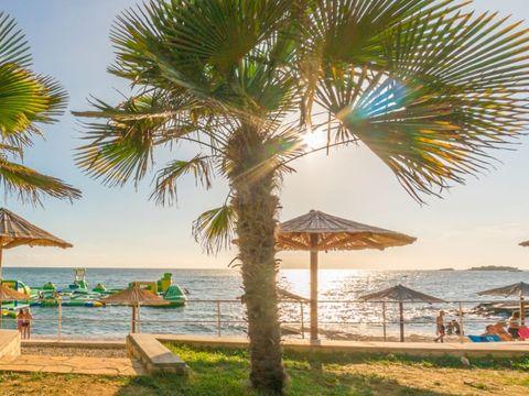 Camping Bijela Uvala  - Camping Istrie - Image N°13