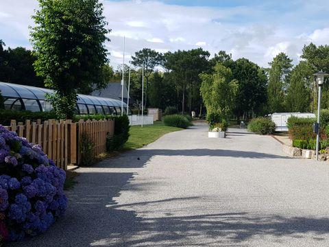 Morbihan  Camping Le Saint Laurent - Camping Morbihan - Afbeelding N°19