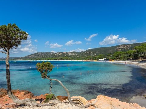 Résidence Le Village Marin - Camping Corsica - Image N°12