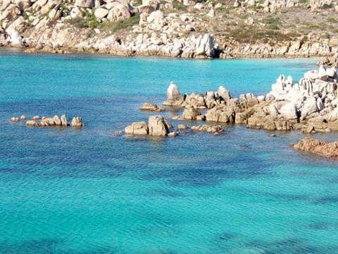 Camping Cupulatta  - Camping Corse - Image N°13