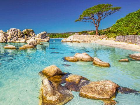 Camping La Baie des Voiles - Camping Corse du sud - Image N°10