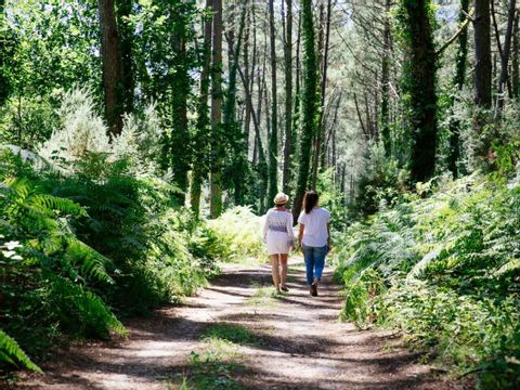 Camping La Forêt du Pilat - Camping Gironde - Image N°30