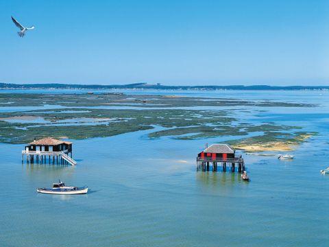 Camping Airotel Pyla - Camping Gironde - Image N°17