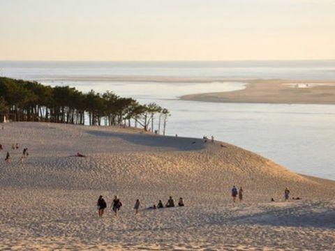 Camping Airotel Pyla - Camping Gironde - Image N°20