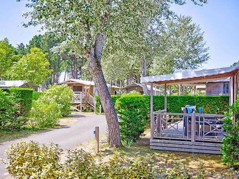 Flower Camping Bois d'Amour  - Camping Morbihan - Image N°14