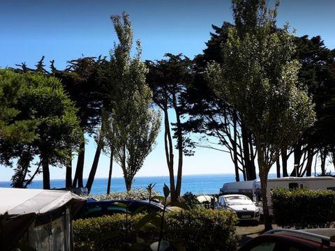 Camping Du Conguel - Camping Morbihan - Image N°15