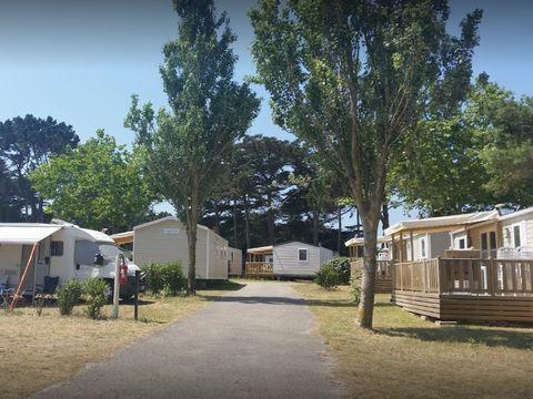 Camping Du Conguel - Camping Morbihan - Image N°13