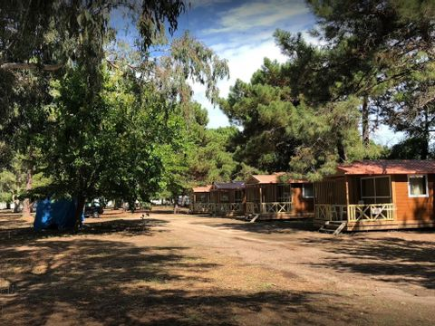 Camping L'Oso - Camping Corse du sud - Image N°4
